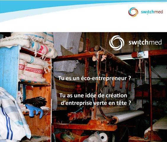 APPEL A CANDIDATURES SwitchMed, Formations d'entrepreneurs verts |